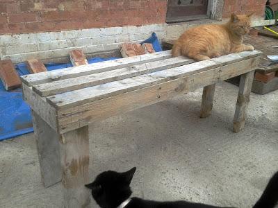 Bauen benchs mit Paletten3
