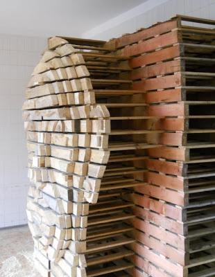Fai da te disegno della testa umana fatta di pallet di legno2