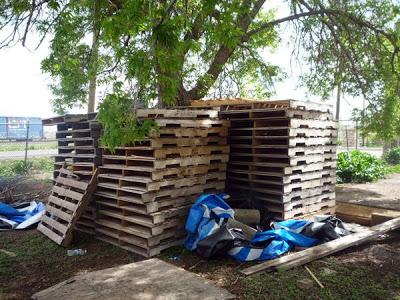 Mobili con pallet centro di produzione agricola costruita su pallet di legno riciclato2