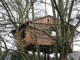 Pallet albero - casa per i nostri figli11