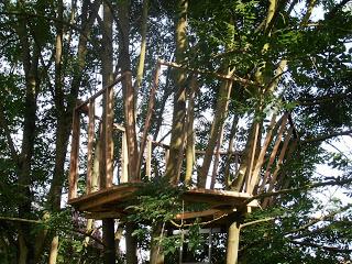 Pallet albero - casa per i nostri figli3
