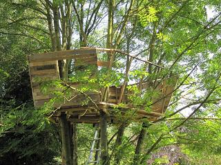 Pallet albero - casa per i nostri figli4