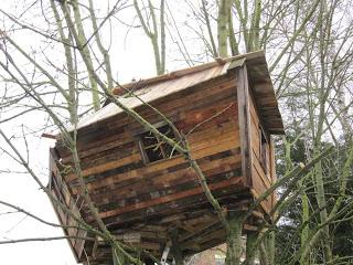 Pallet albero - casa per i nostri figli9