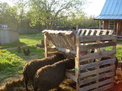 Pallets abbeveratoio per il bestiame