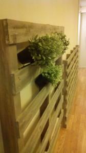 Giardino verticale realizzato con pallet5