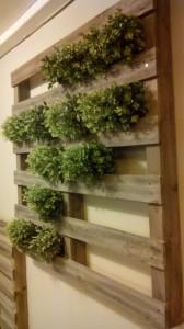 Giardino verticale realizzato con pallet6