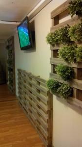 Giardino verticale realizzato con pallet7