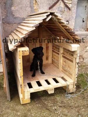 Casa del cane di Manou con pallet