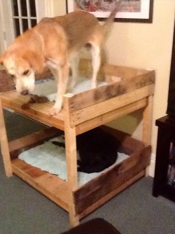 Letto a castello per cani realizzati con pallet mobili con for Piani di ascensore domestico