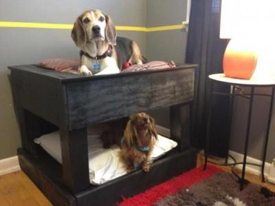 Letto a castello per cani realizzati con pallet! 4
