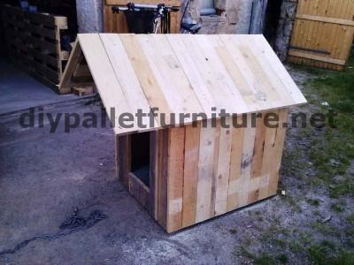 Manou Hund Haus mit Paletten 6