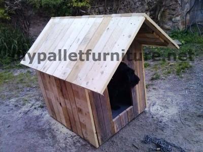 Manou Hund Haus mit Paletten 8