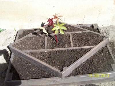 Le istruzioni su come fare una fioriera con forme geometriche3