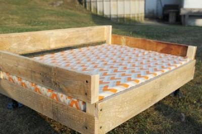 Costruire un letto pallet per i tuoi animali5