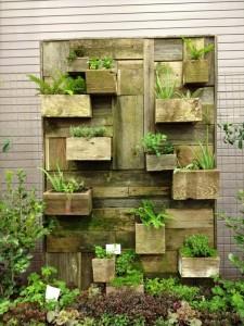 Disegno del giardino verticale costruita con assi di pallet 2