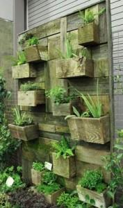 Disegno del giardino verticale costruita con assi di pallet 1