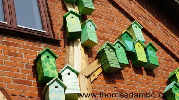Happy city birds, un progetto scolastico per i bambini con palette 3
