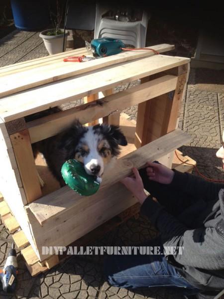 Pallets Doghouse 2