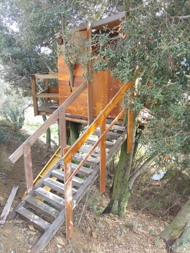 Costruire una casa sull albero per bambini come costruire una casetta in legno per bambini - Casa sull albero da costruire ...