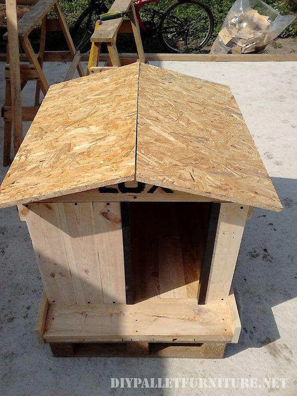 casa-del-cane-a-prova-acqua-4